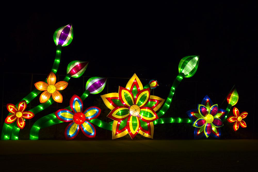 Moonlight Forest 洛杉磯植物園燈飾展覽_圖1-6