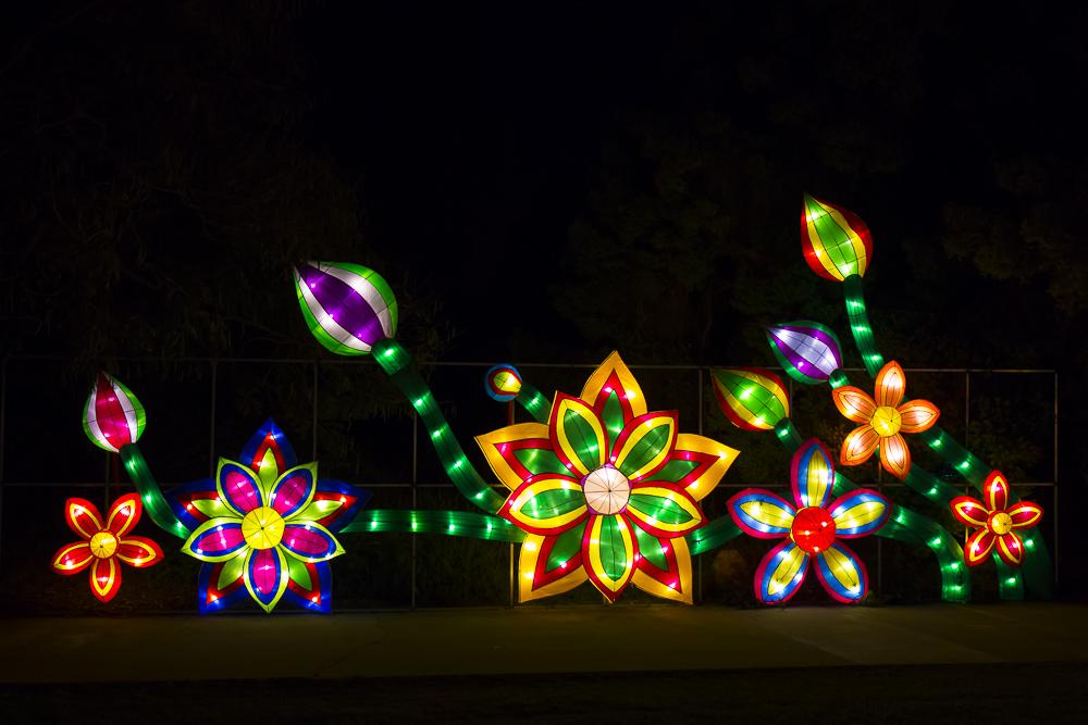 Moonlight Forest 洛杉磯植物園燈飾展覽_圖1-7