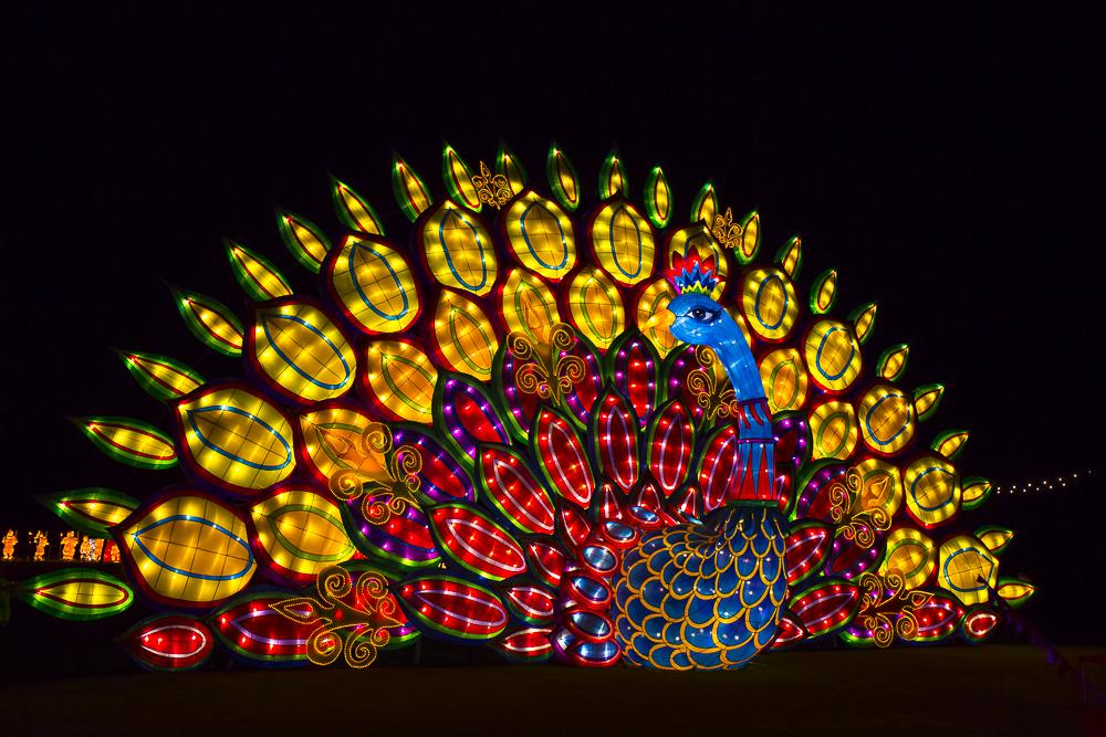 Moonlight Forest 洛杉磯植物園燈飾展覽_圖1-8