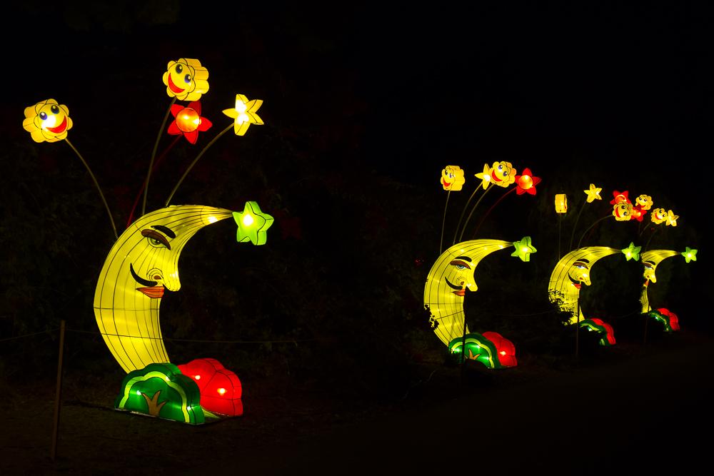 Moonlight Forest 洛杉磯植物園燈飾展覽_圖1-10