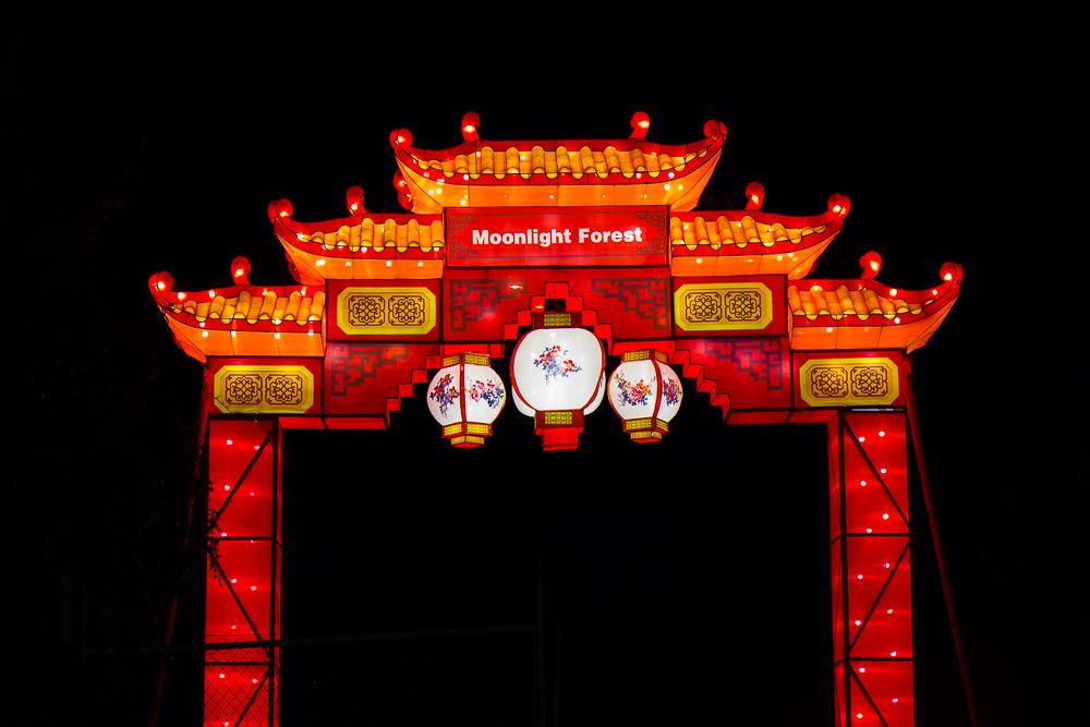 Moonlight Forest 洛杉磯植物園燈飾展覽_圖1-1