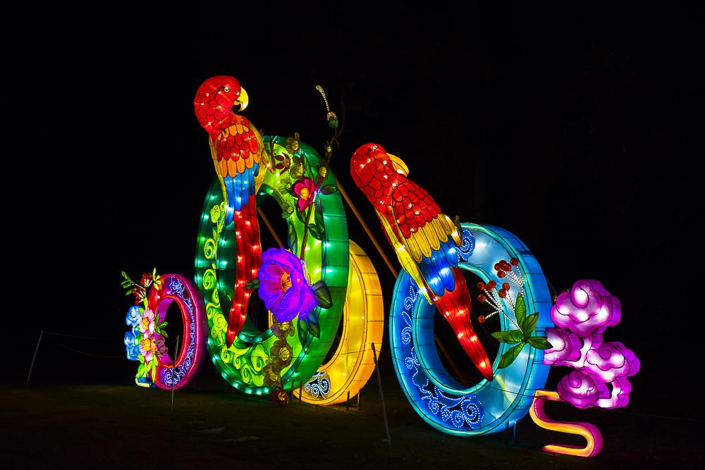 Moonlight Forest 洛杉磯植物園燈飾展覽_圖1-12