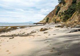 """新西兰""""粉红海滩"""""""
