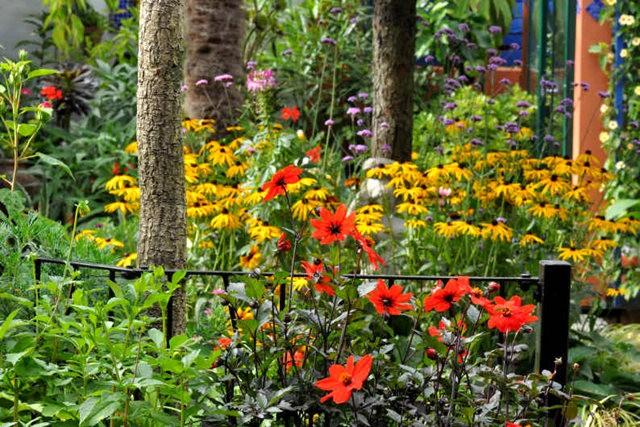 馬爾科姆斯花園---3_圖1-8