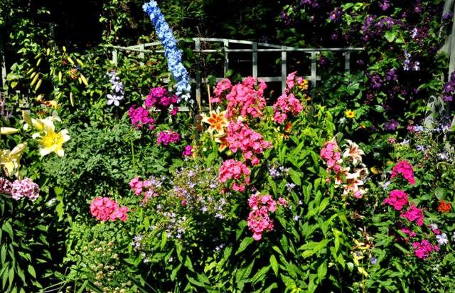 馬爾科姆斯花園---3_圖1-12