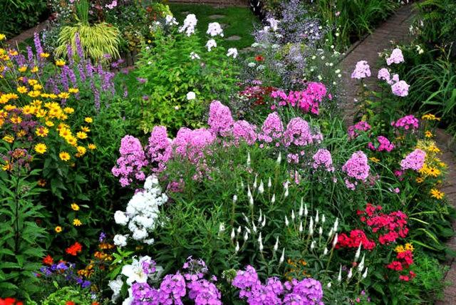 馬爾科姆斯花園---3_圖1-18