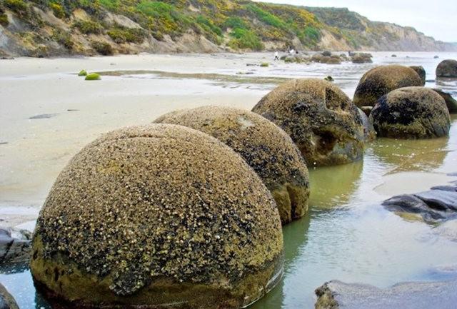 摩拉基巨石---新西蘭之謎_圖1-14
