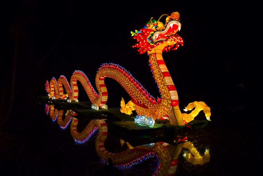 Moonlight Forest 洛杉磯植物園燈飾展覽 3_圖1-1