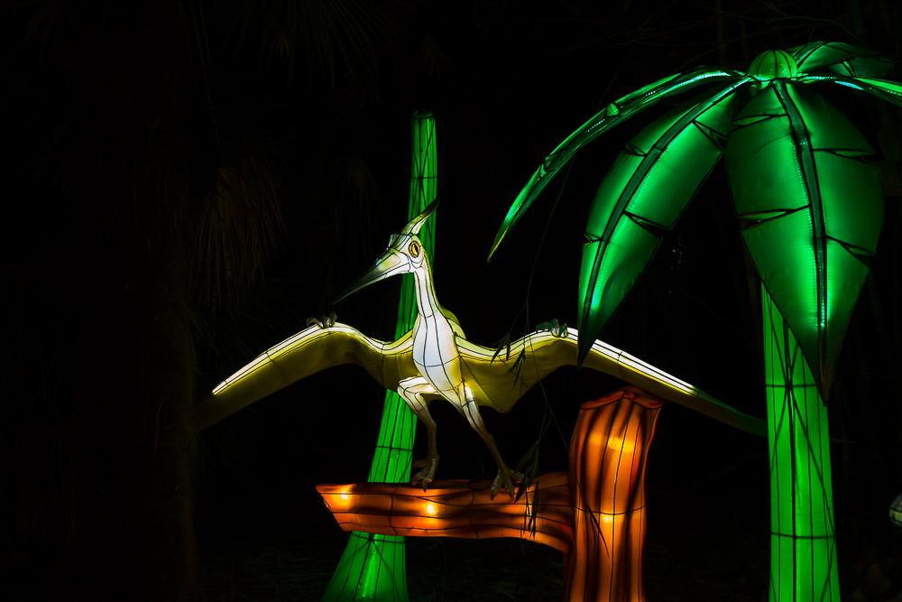 Moonlight Forest 洛杉磯植物園燈飾展覽 3_圖1-12