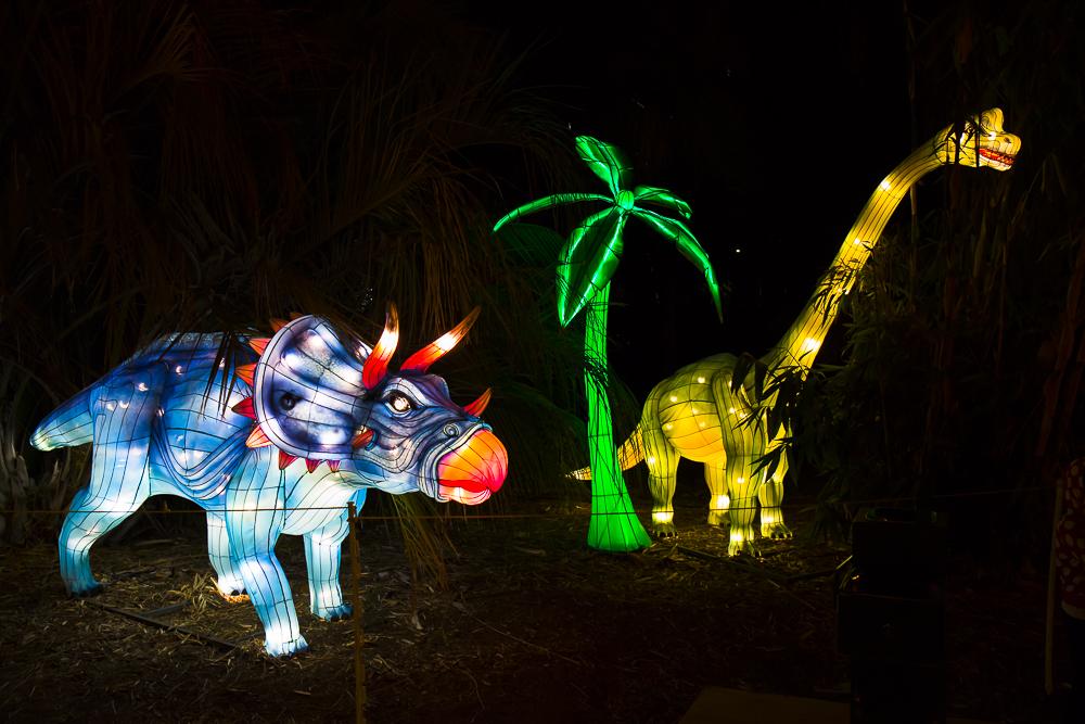 Moonlight Forest 洛杉磯植物園燈飾展覽 3_圖1-13