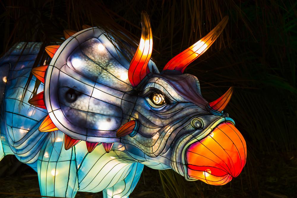 Moonlight Forest 洛杉磯植物園燈飾展覽 3_圖1-15