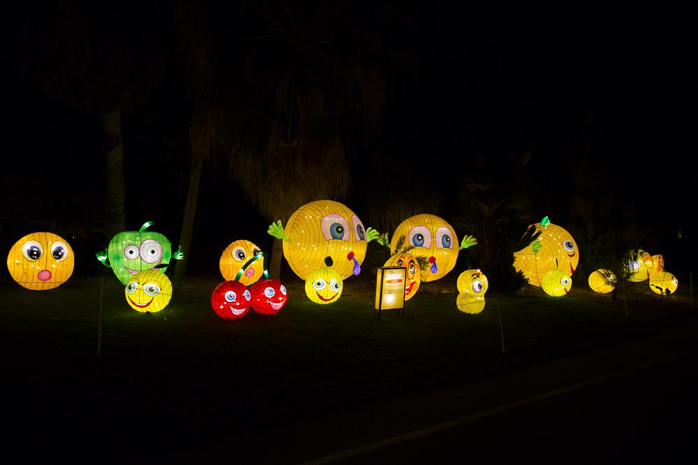 Moonlight Forest 洛杉磯植物園燈飾展覽 3_圖1-6