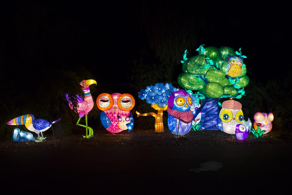 Moonlight Forest 洛杉磯植物園燈飾展覽 3_圖1-5
