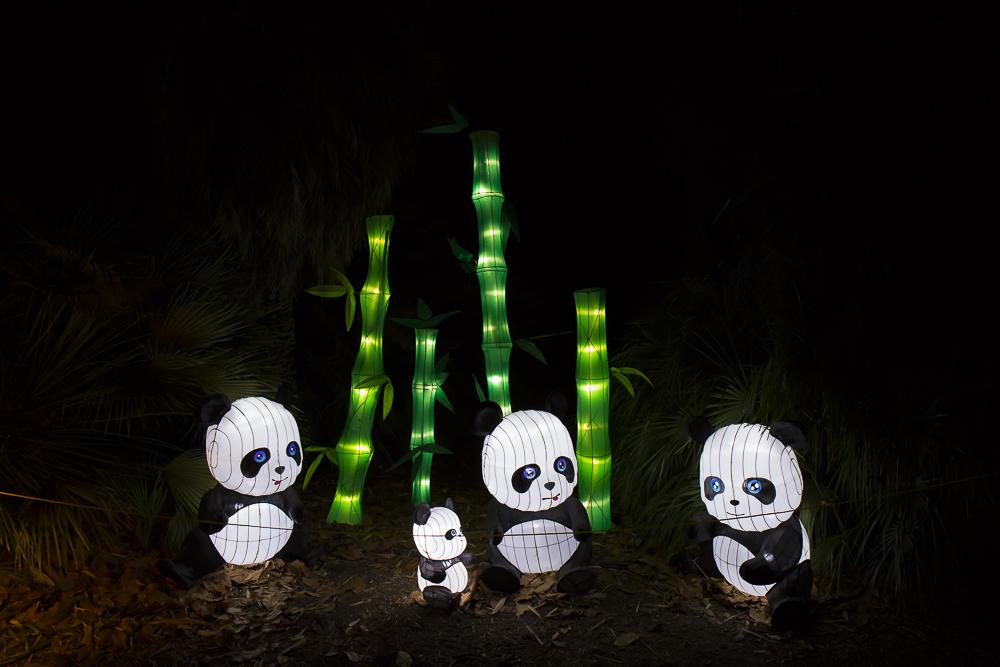 Moonlight Forest 洛杉磯植物園燈飾展覽 3_圖1-3