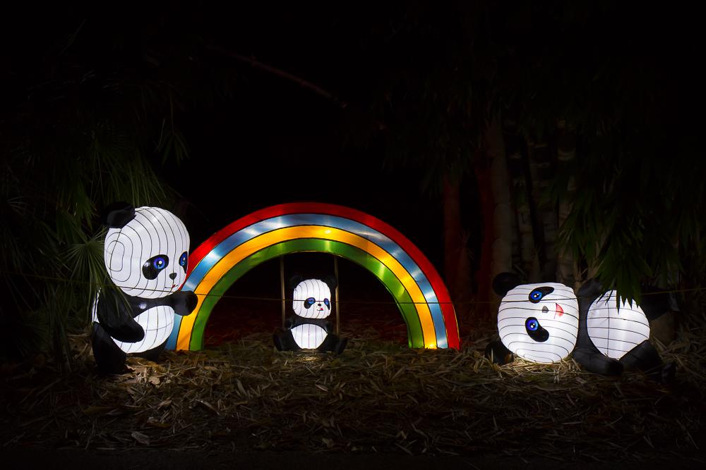 Moonlight Forest 洛杉磯植物園燈飾展覽 3_圖1-4