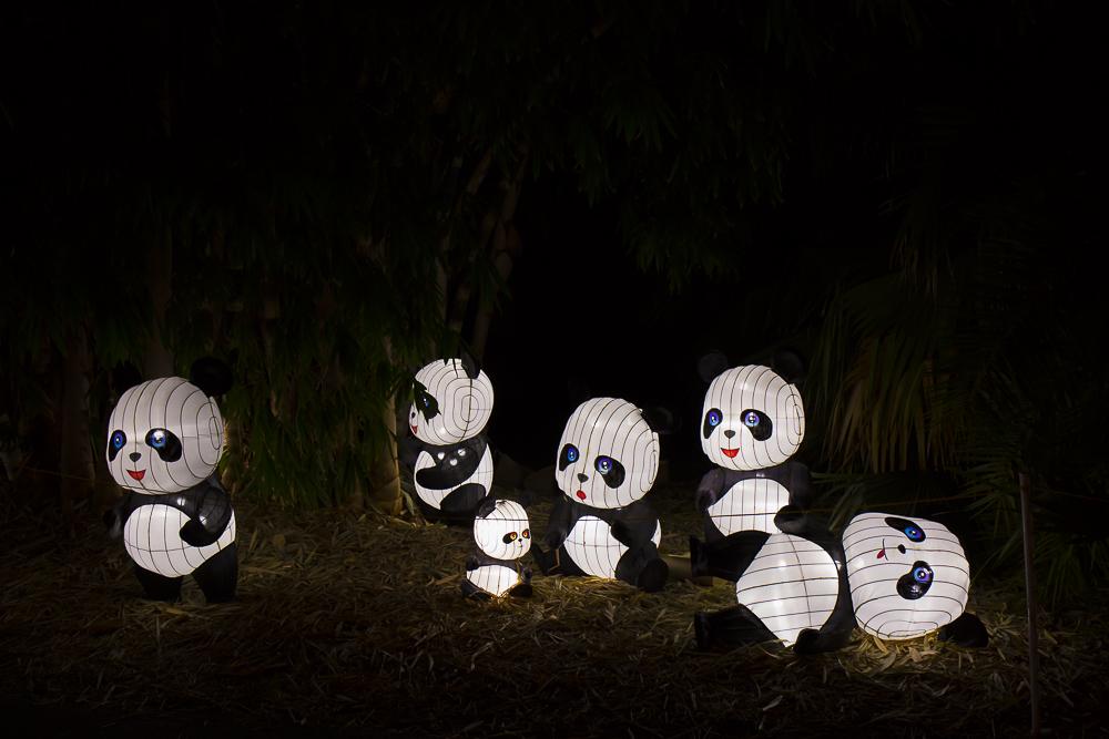 Moonlight Forest 洛杉磯植物園燈飾展覽 3_圖1-7
