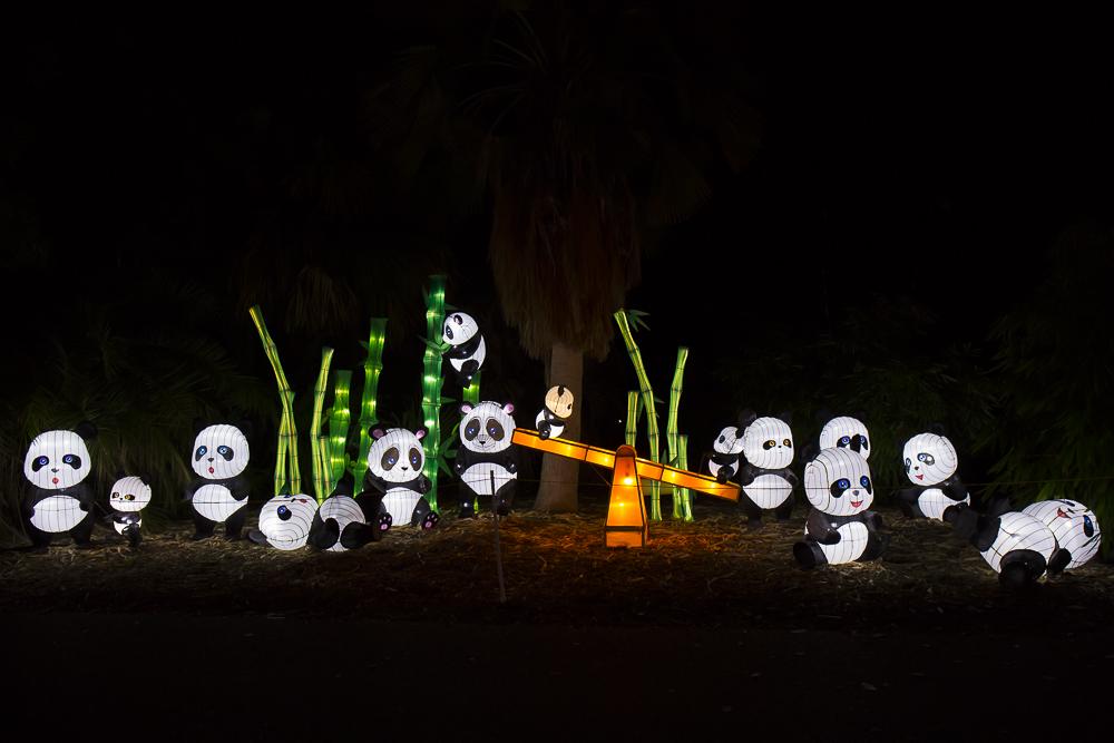 Moonlight Forest 洛杉磯植物園燈飾展覽 3_圖1-8