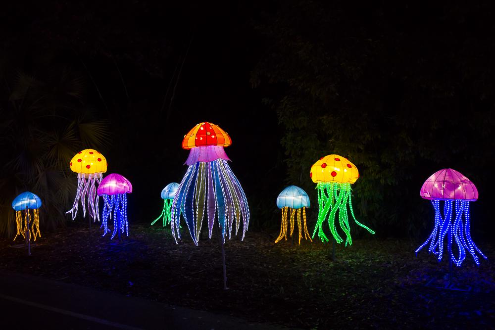 Moonlight Forest 洛杉磯植物園燈飾展覽 3_圖1-10
