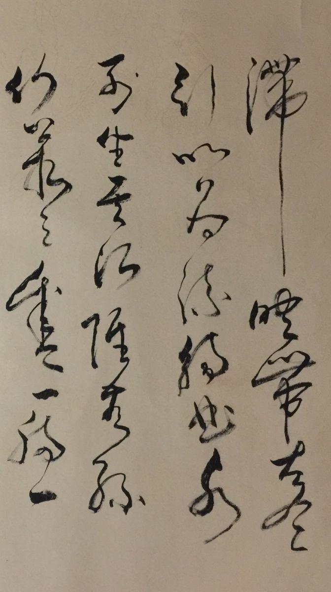 艺术家石维加草书艺术_图1-2