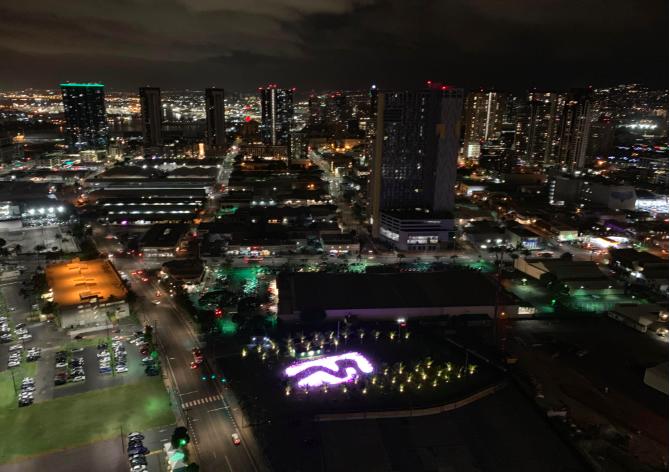作客夏威夷房地产开发商的顶层豪宅_图1-12