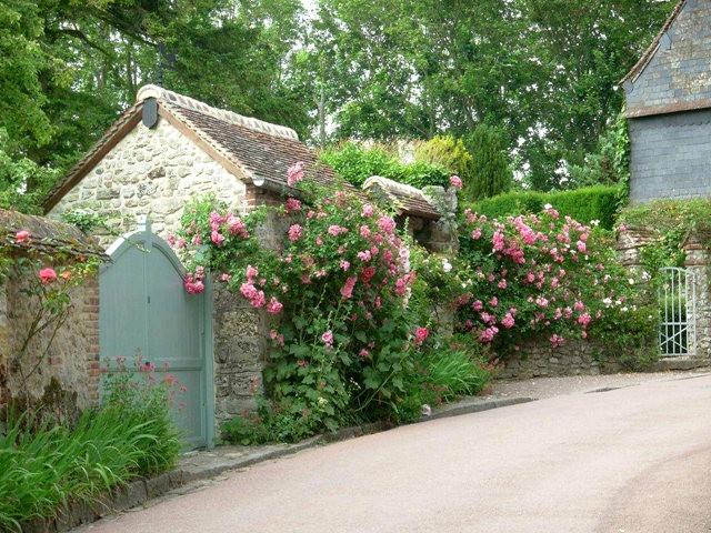 谢迪尼--法国玫瑰村_图1-8