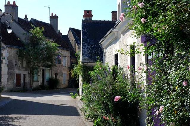 谢迪尼--法国玫瑰村_图1-10