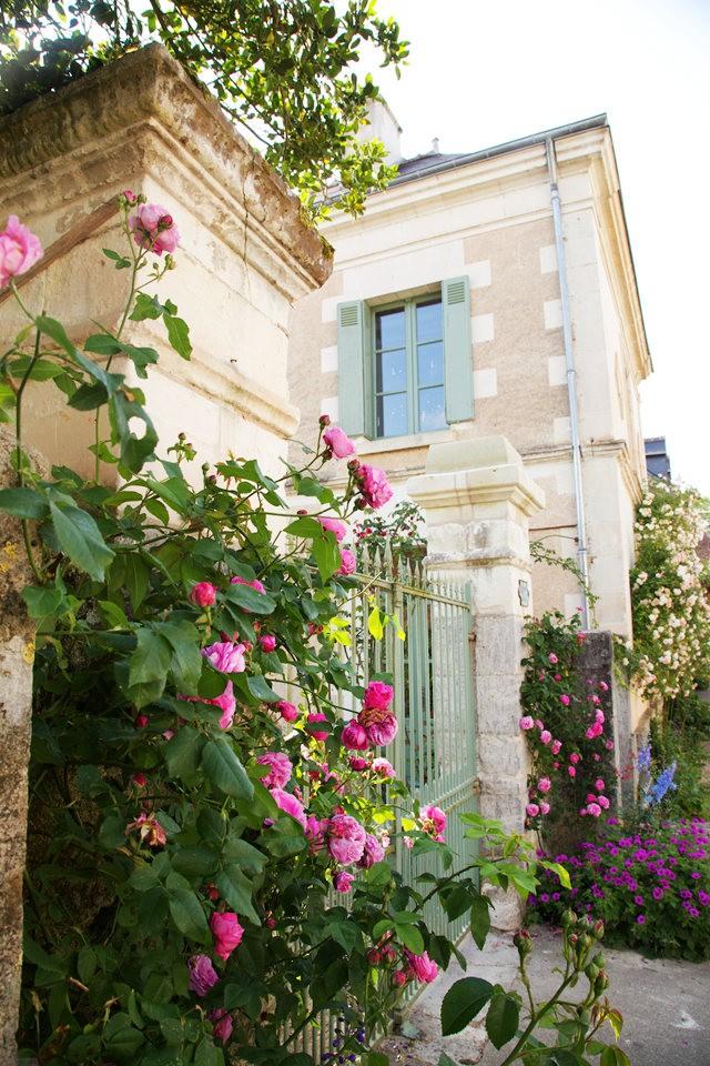 谢迪尼--法国玫瑰村_图1-11