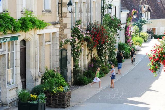 谢迪尼--法国玫瑰村_图1-15