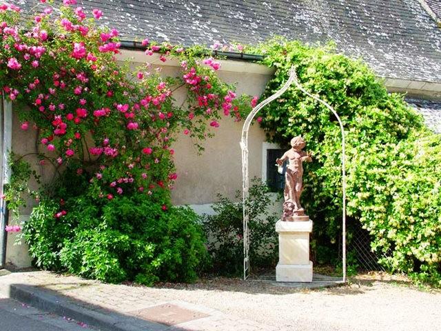谢迪尼--法国玫瑰村_图1-16