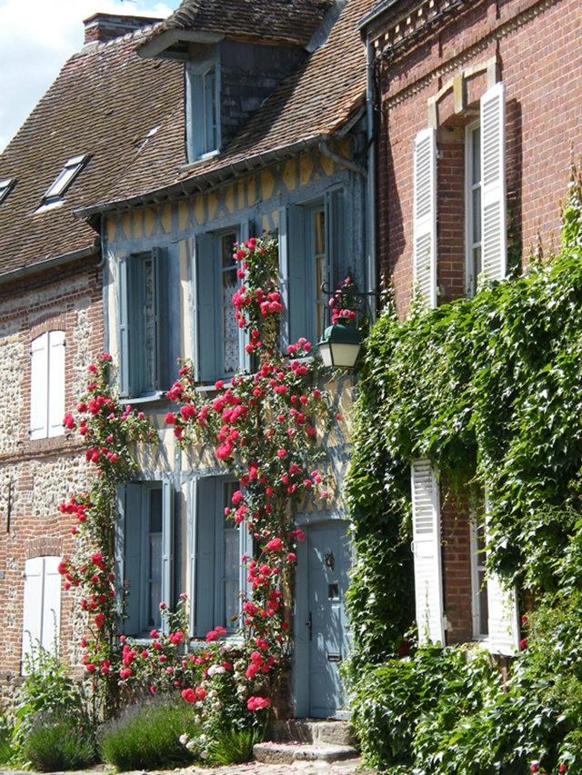 谢迪尼--法国玫瑰村_图1-23