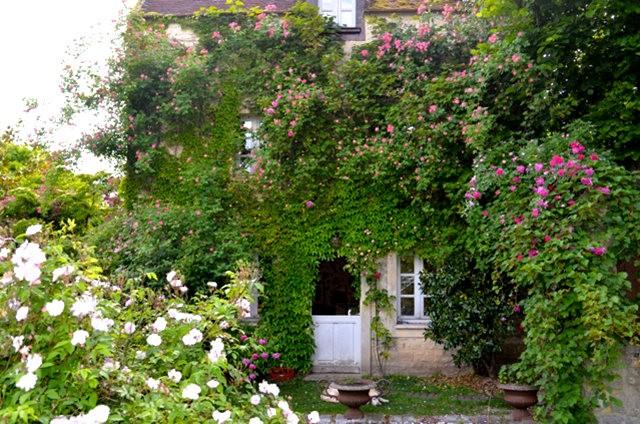 谢迪尼--法国玫瑰村_图1-32