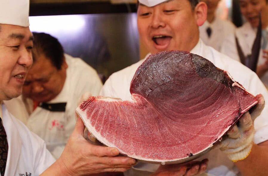 天下第一贵的鱼,比大熊猫还濒危,因太好吃人类不愿禁捕_图1-5