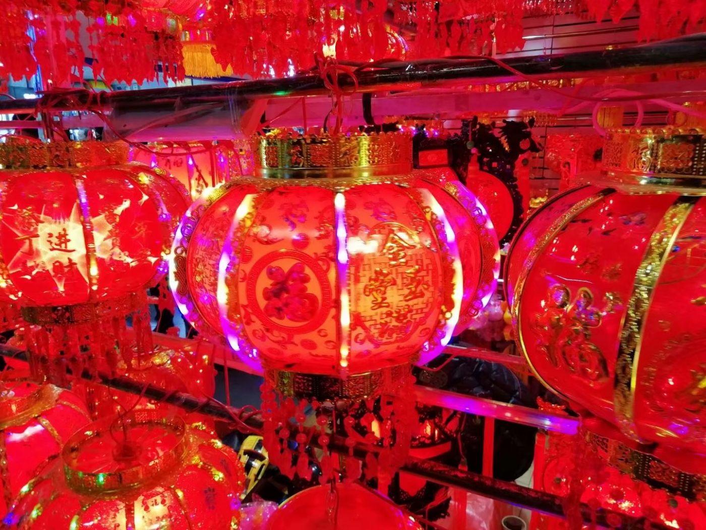 红红火火迎猪年(图)_图1-6