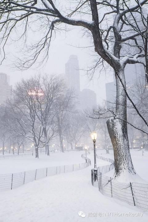 【屋主手册】纽约市的雪天规定:铲雪要求_图1-8