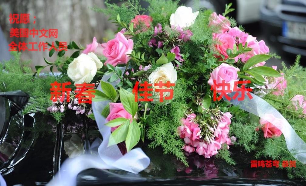 祝美中网,全体工作人员新春快乐_图1-2