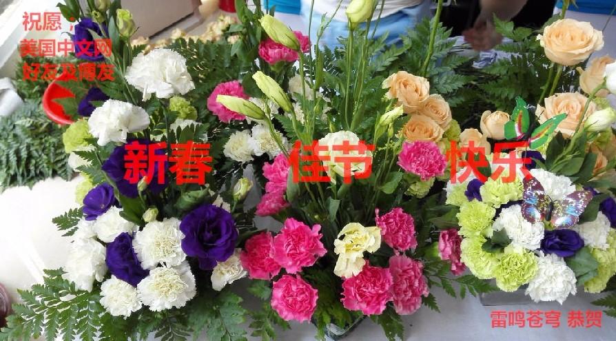 祝美中网好友及博友新春快乐_图1-1