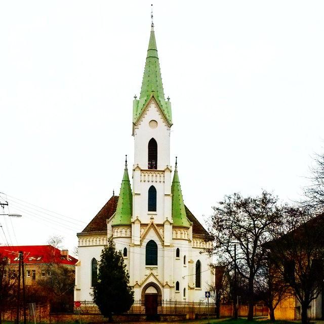 霍德梅泽瓦_图1-17
