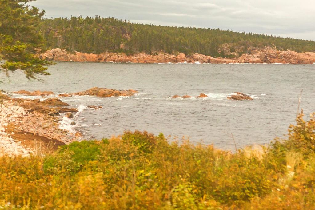 加拿大旅途,朦胧的窗外景色_图1-5