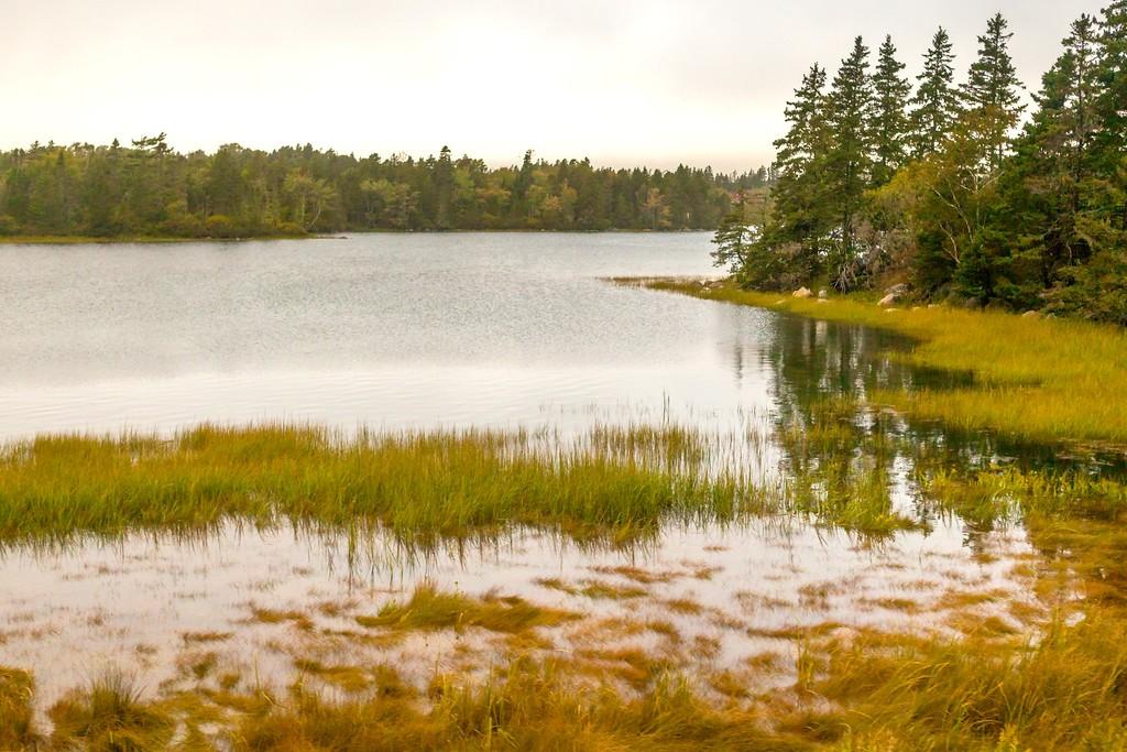 加拿大旅途,朦胧的窗外景色_图1-13