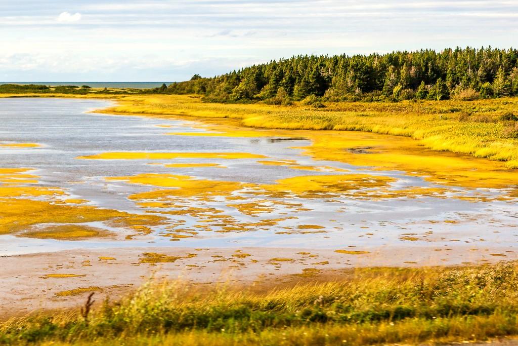 加拿大旅途,朦胧的窗外景色_图1-14