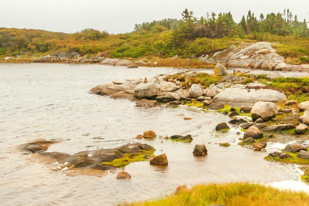 加拿大旅途,朦胧的窗外景色_图1-19