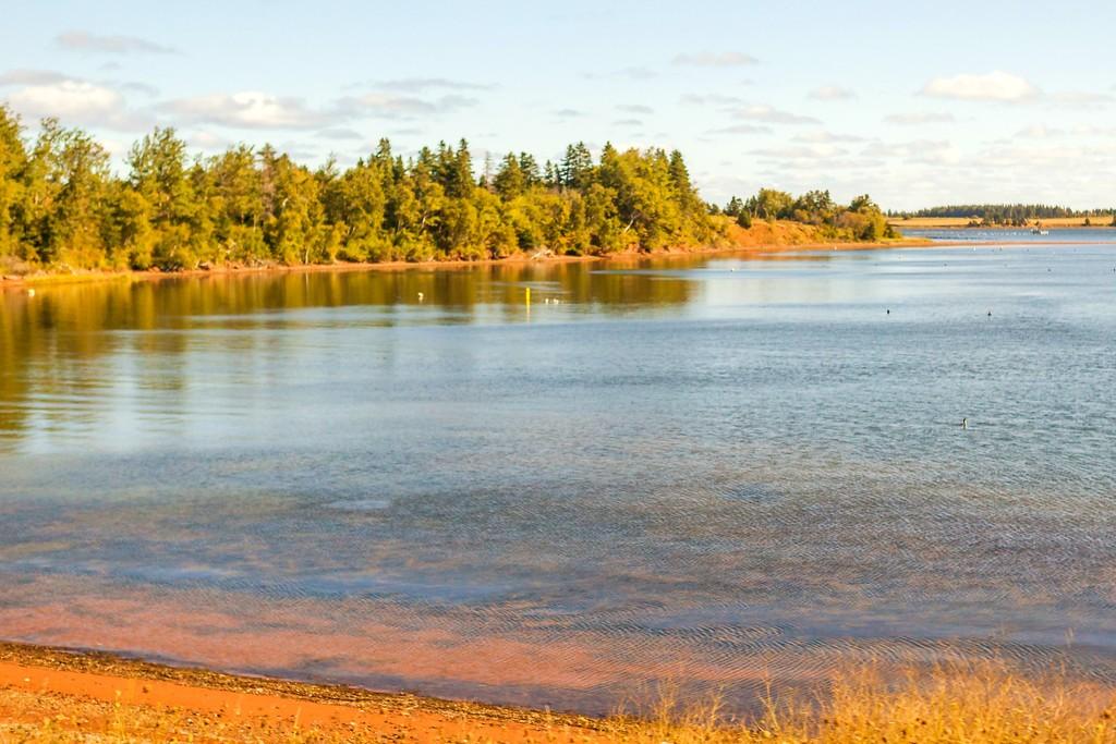 加拿大旅途,朦胧的窗外景色_图1-18
