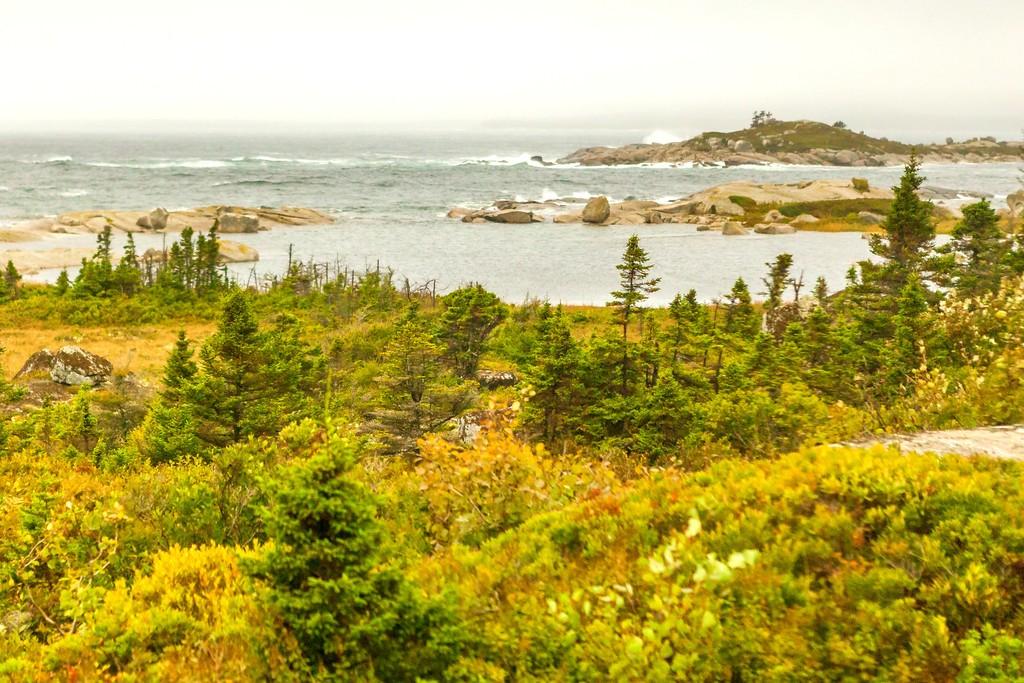 加拿大旅途,朦胧的窗外景色_图1-27