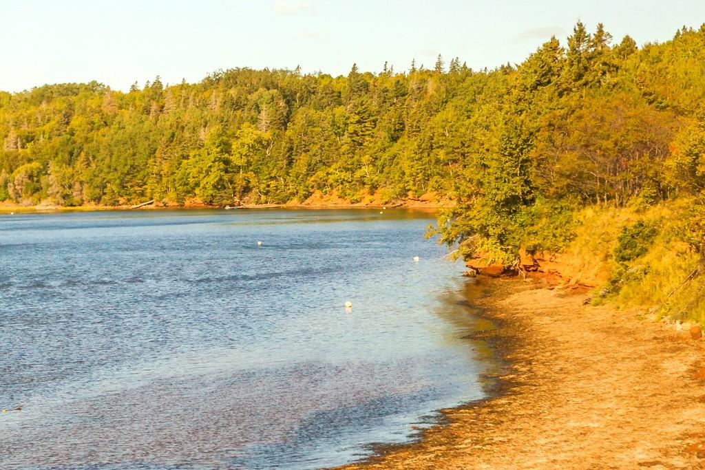 加拿大旅途,朦胧的窗外景色_图1-34