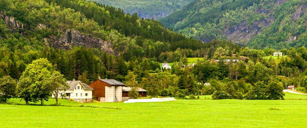 北欧旅途,好一派丰收景象_图1-23