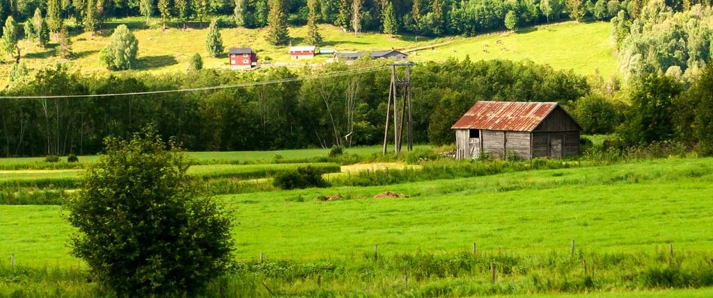 北欧旅途,好一派丰收景象_图1-6