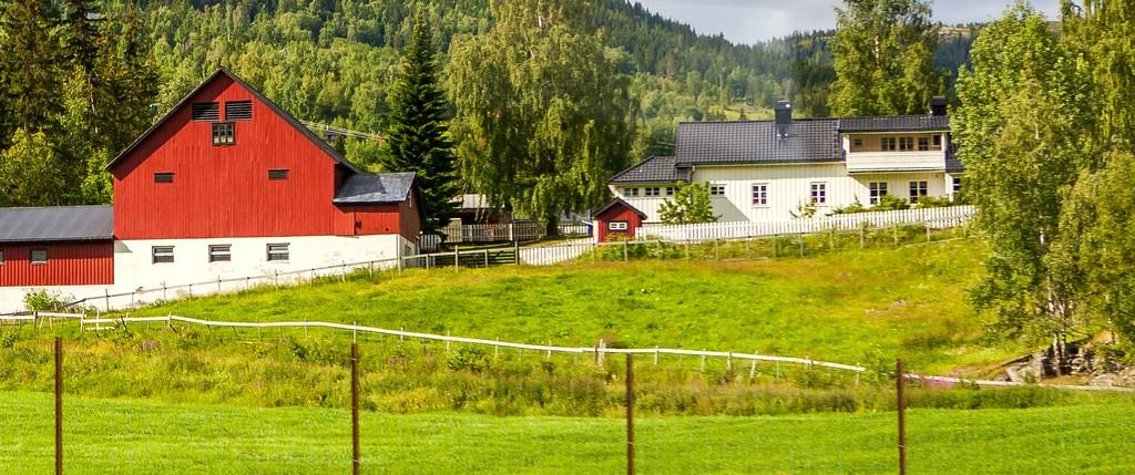 北欧旅途,好一派丰收景象_图1-25