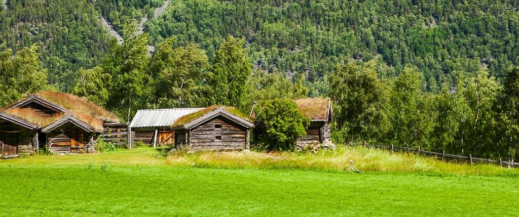 北欧旅途,好一派丰收景象_图1-38
