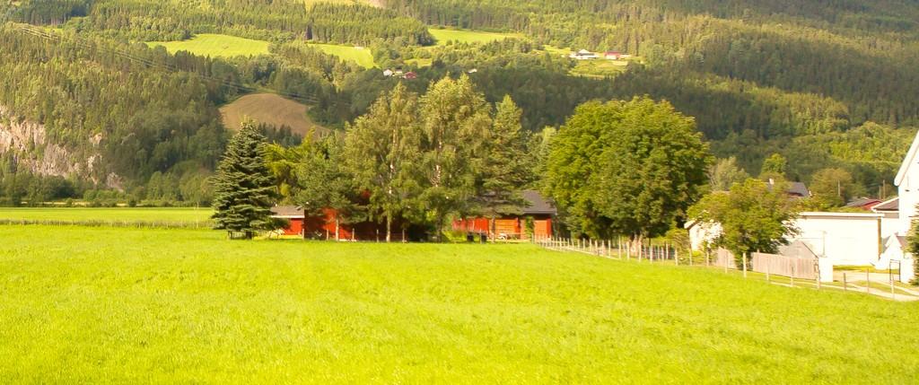 北欧旅途,好一派丰收景象_图1-37