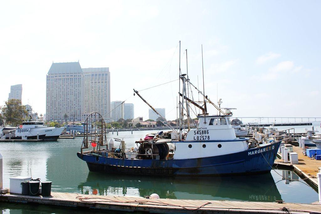圣迭哥鲔鱼港公园随拍_图1-12